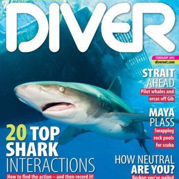 DIVER Magazine | Strait Run | Article