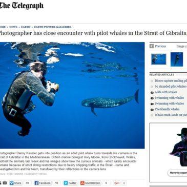 The Telegraph | Close Encounter | Article