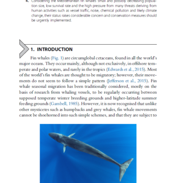 Advances in Marine Biology, Volume 75 – Fin Whales, Balaenoptera physalus: At Home in a Changing Mediterranean Sea?