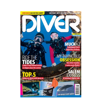 GIANTS OF THE UNDEAD MED – Diver March 2017