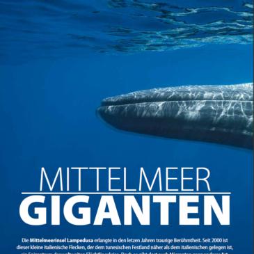 Mittelmeer Giganten – Unnterwasser March 2017 feature